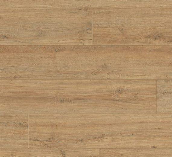 Elegance Garonne oak